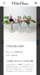 届いたお花の詳細